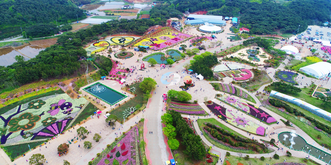 Korea Flower Park 空气